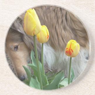 Collie n Tulips coasters