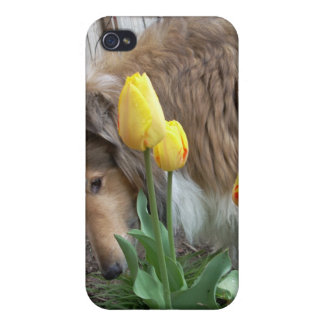Collie n Tulips iPhone 4 case