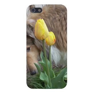 Collie n Tulips iPhone 5 case