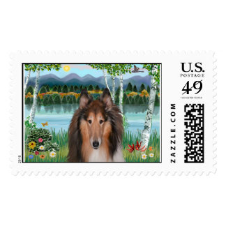 "Collie Portrait - ""In the Birches"" Postage"