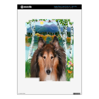 "Collie Portrait - ""In the Birches"" Skin For iPad 3"