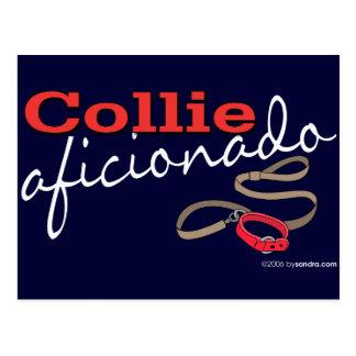 Collie Postcard