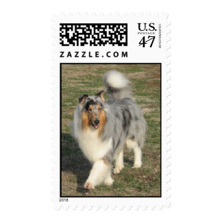 Collie Pride Postage