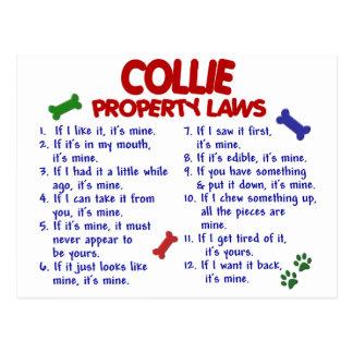 Collie Property Laws 2 Postcard