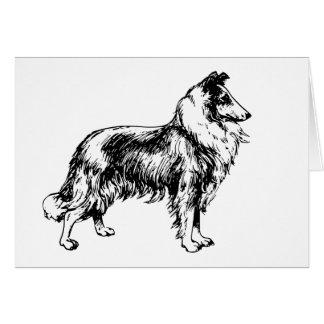 Collie rough dog illustration blank birthday card