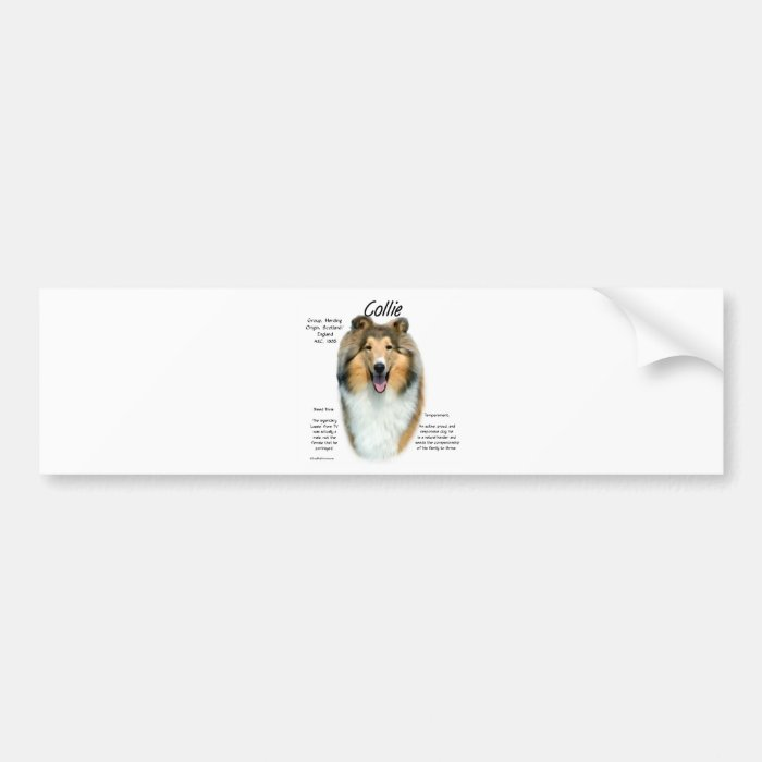 Collie (sable rough) History Design Bumper Sticker