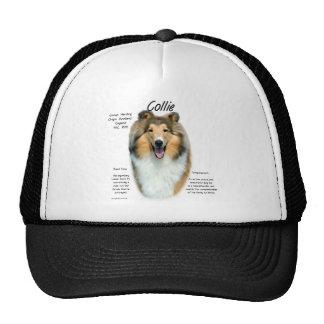 Collie (sable rough) History Design Mesh Hat