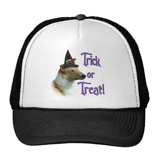 Collie (sable, smooth) Trick Trucker Hats