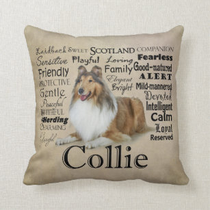 Collie Decorative Throw Pillows Zazzle