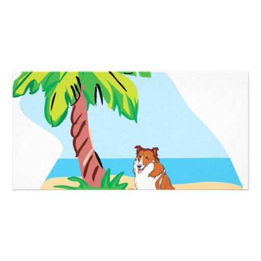 collie tropical tarjeta fotográfica