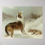 Collie und Schaf Posters