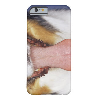 Collie wagging tongue barely there iPhone 6 case