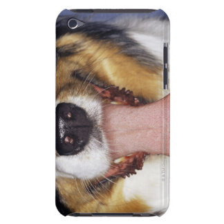 Collie wagging tongue iPod touch Case-Mate case