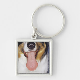 Collie wagging tongue Silver-Colored square keychain