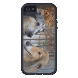 Collies Digitally Painted iPhone SE/5/5s Case