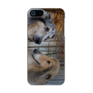 Collies Digitally Painted Metallic Phone Case For iPhone SE/5/5s