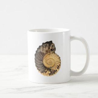 Collignoniceras woollgari- Cretaceous ammonite Coffee Mug