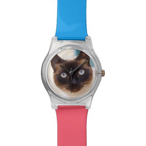 Collioure. El Rosellón. Un gato de la calle. Franc Reloj De Mano