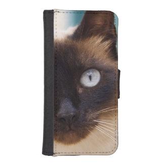 Collioure. Roussillon. A street cat. France. Phone Wallet Case