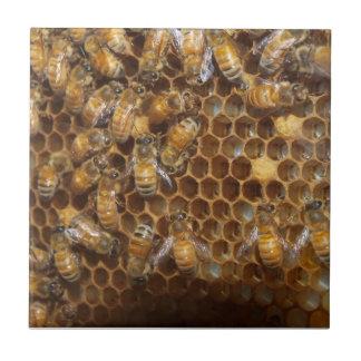 Colmena de la abeja azulejo cuadrado pequeño