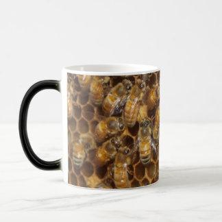 Colmena de la abeja taza mágica