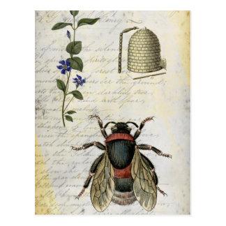 Colmena de la flor de la abeja postal