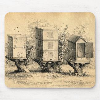 Colmena de las colmenas de la apicultura del vinta tapetes de ratón