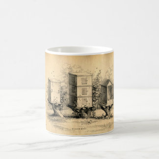Colmena de las colmenas de la apicultura del vinta taza