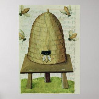 Colmena y abejas póster