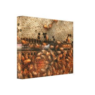 Colmenar - abeja - éxito dulce impresiones de lienzo