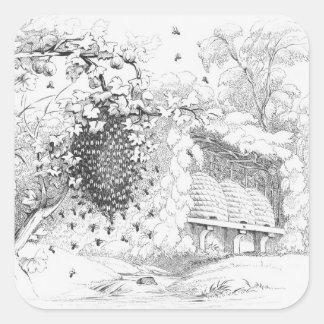 Colmenas de la abeja del vintage pegatina cuadrada