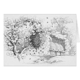 Colmenas de la abeja del vintage tarjeta