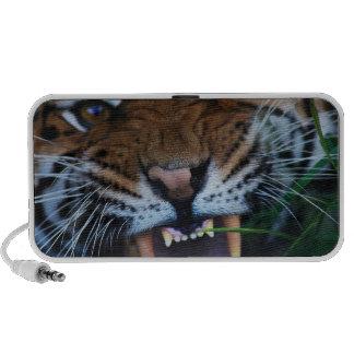 Colmillos de los tigres mp3 altavoces