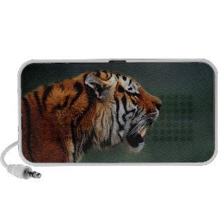 Colmillos de los tigres notebook altavoces