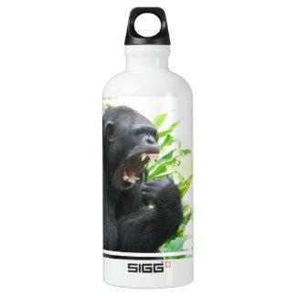 Colmillos del chimpancé