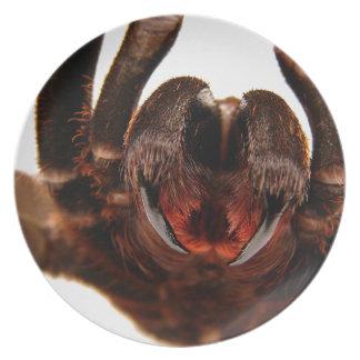 Colmillos - imagen 2 del arte del Tarantula Platos Para Fiestas
