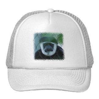 Colobus Monkey Baseball Hat