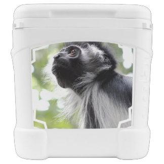 Colobus Monkey Igloo Rolling Cooler