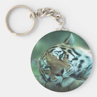 Colocación del tigre llaveros personalizados