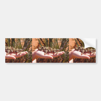Colocación horrible de los pajotes en la mano pegatina de parachoque