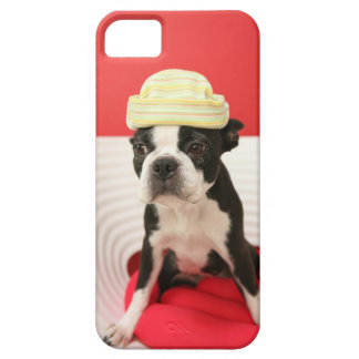 Cologalita Ⅹ iPhone 5 Carcasas