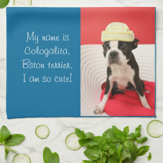Cologalita with hat kitchen towel