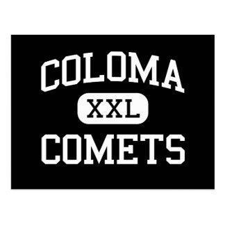 Coloma - cometas - joven - Coloma Michigan Tarjetas Postales
