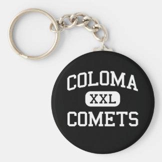 Coloma - cometas - mayor - Coloma Michigan Llavero Redondo Tipo Pin