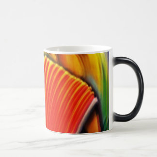 Colombian Banda Magic Mug