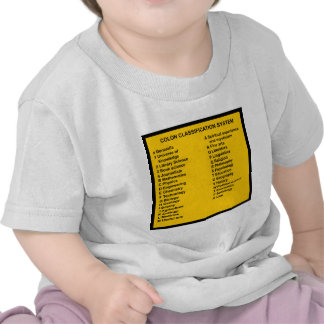 Colon Classification System by Letter Shirts