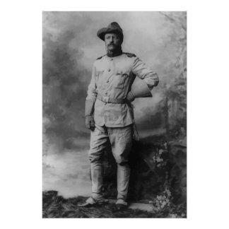 Colonel Teddy Roosevelt Poster