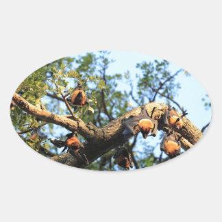 Colonia del palo de fruta del zorro de vuelo en calcomanías óvales personalizadas