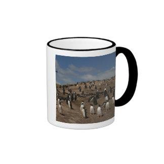 Colonia del pingüino de Gentoo Pygoscelis Papua Taza De Café