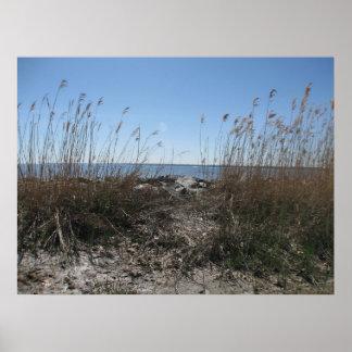 Colonial Beach 1 Print